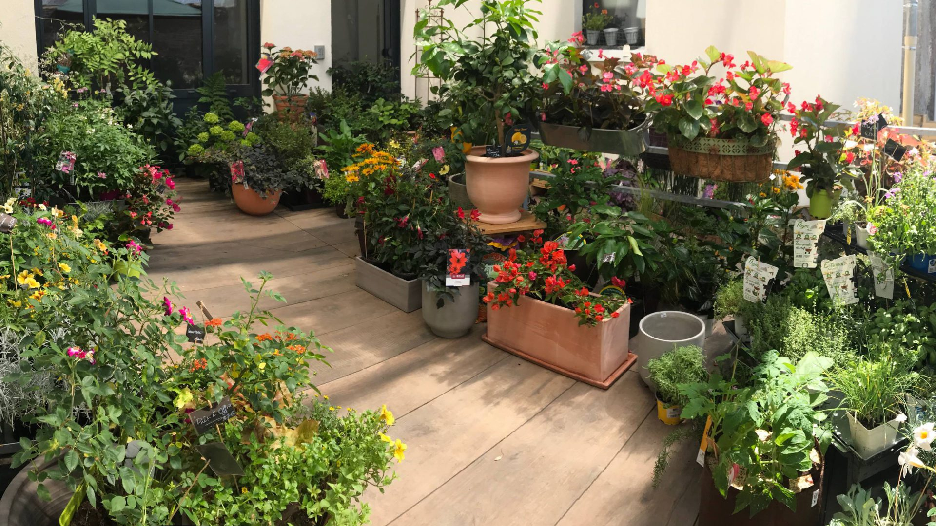 Hortelli - Petits Jardins Et Beaux Objets En Cœur De Ville À ... tout Objets Decoration Jardin Exterieur