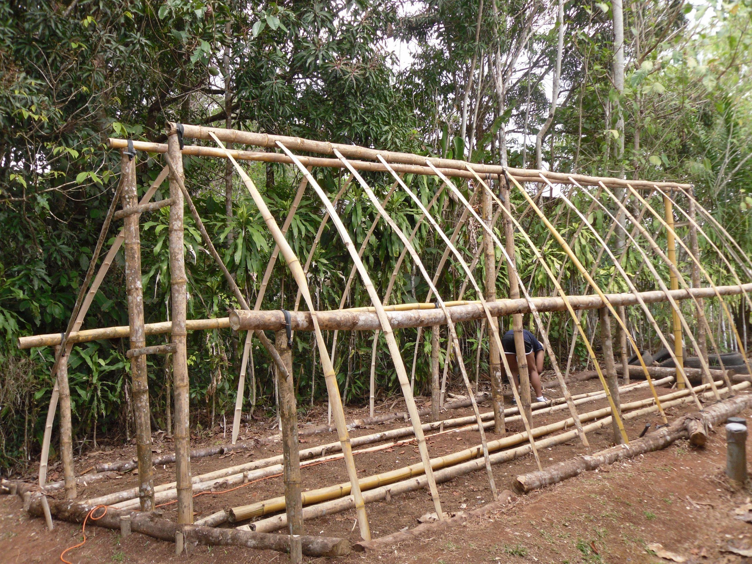 Https://costaricaprogram.files.wordpress/2012/05 ... pour Construction D Une Serre De Jardin En Bois