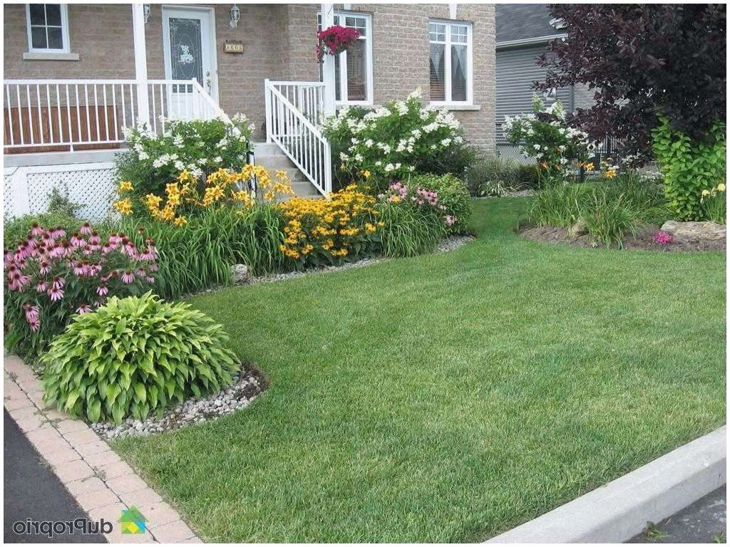 Idee Amenagement Jardin Devant Maison encequiconcerne Comment Aménager Son Jardin Devant La Maison