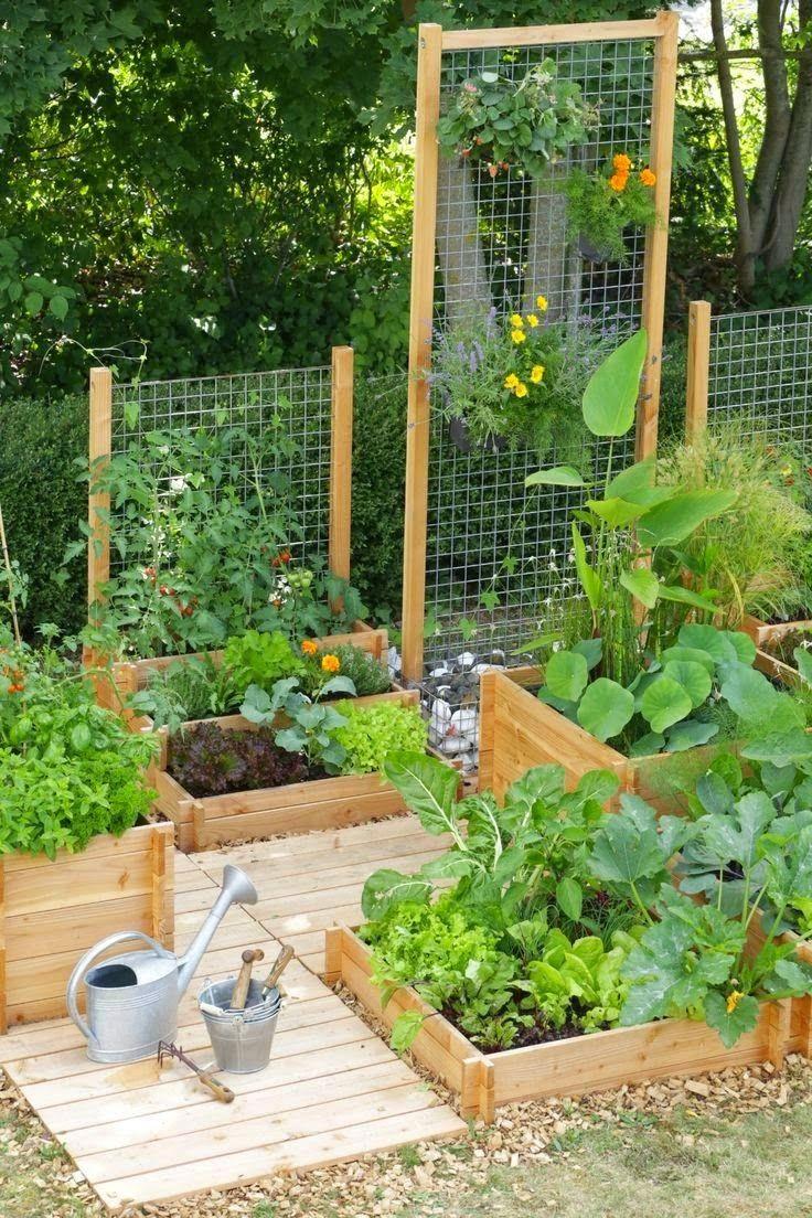 Idée Pour Mini Potager | Jardin En Carré, Idées Jardin ... avec Mini Jardin Balcon