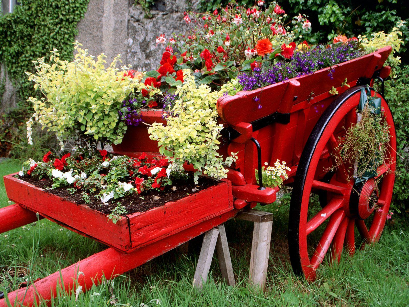 Idées De Décoration Du Jardin Avec Des Brouettes ... serapportantà Brouette Deco Jardin