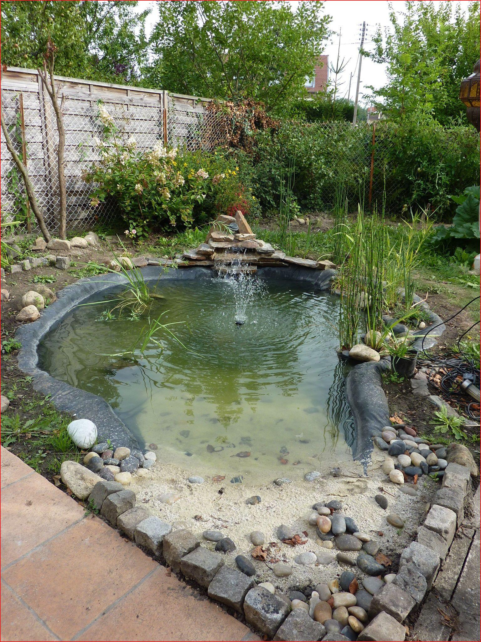 Idées Pour Bassin De Jardin Photos De Jardin Style 527744 ... concernant Bassin De Jardin Jardiland