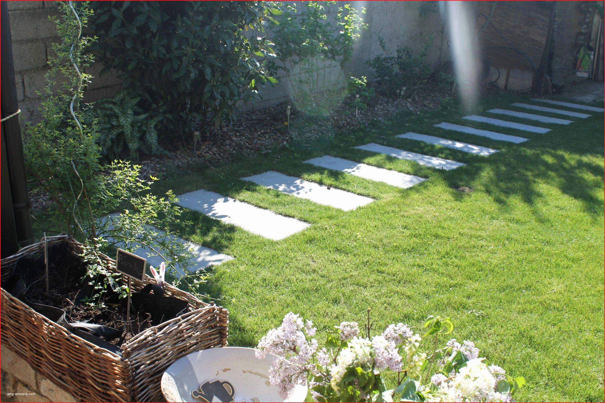 Idées Pour Bassin De Jardin Photos De Jardin Style 527744 ... tout Amenagement De Bassins De Jardin
