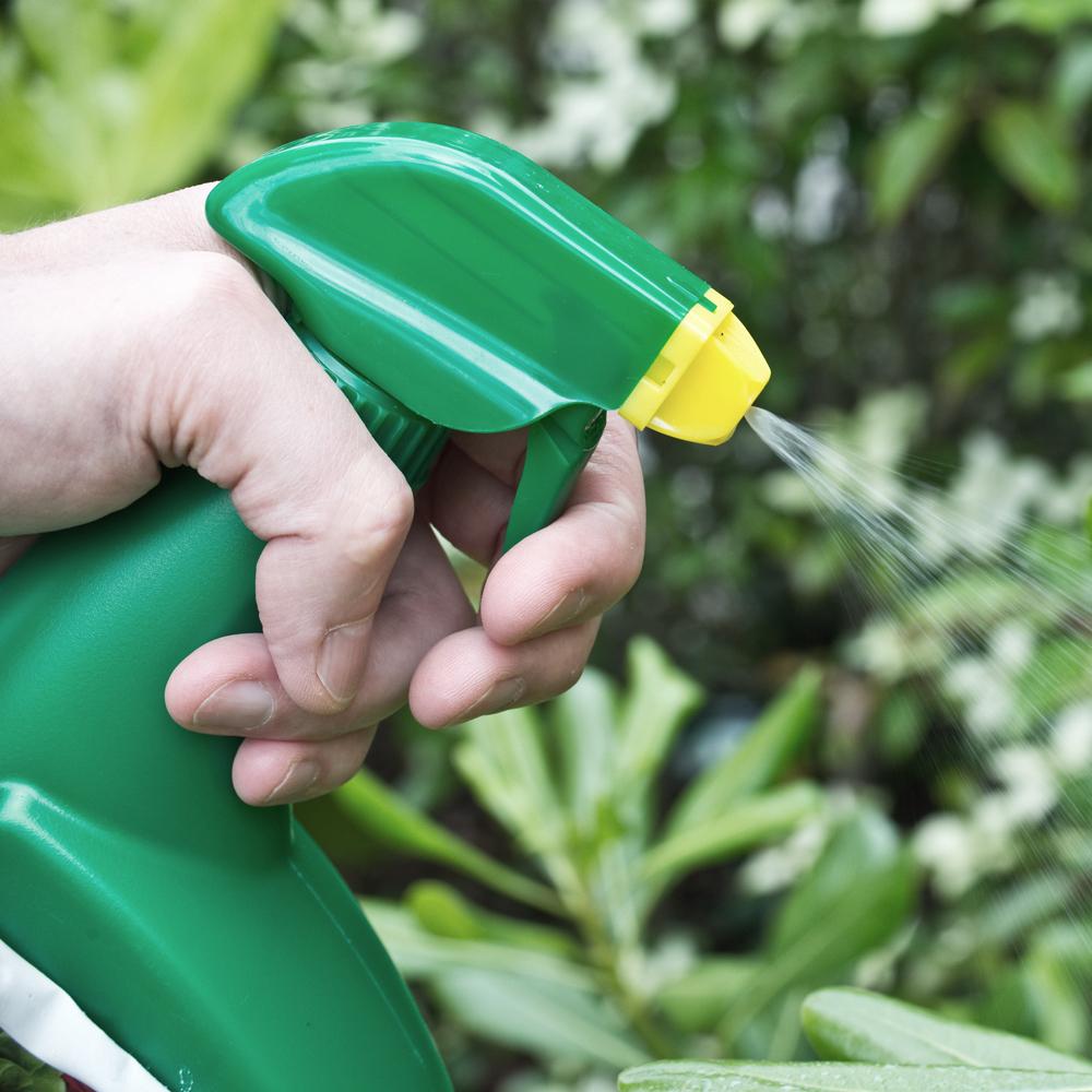 Insecticides Et Produits Anti-Moustique | Groupe Cameron serapportantà Insecticide Moustique Jardin