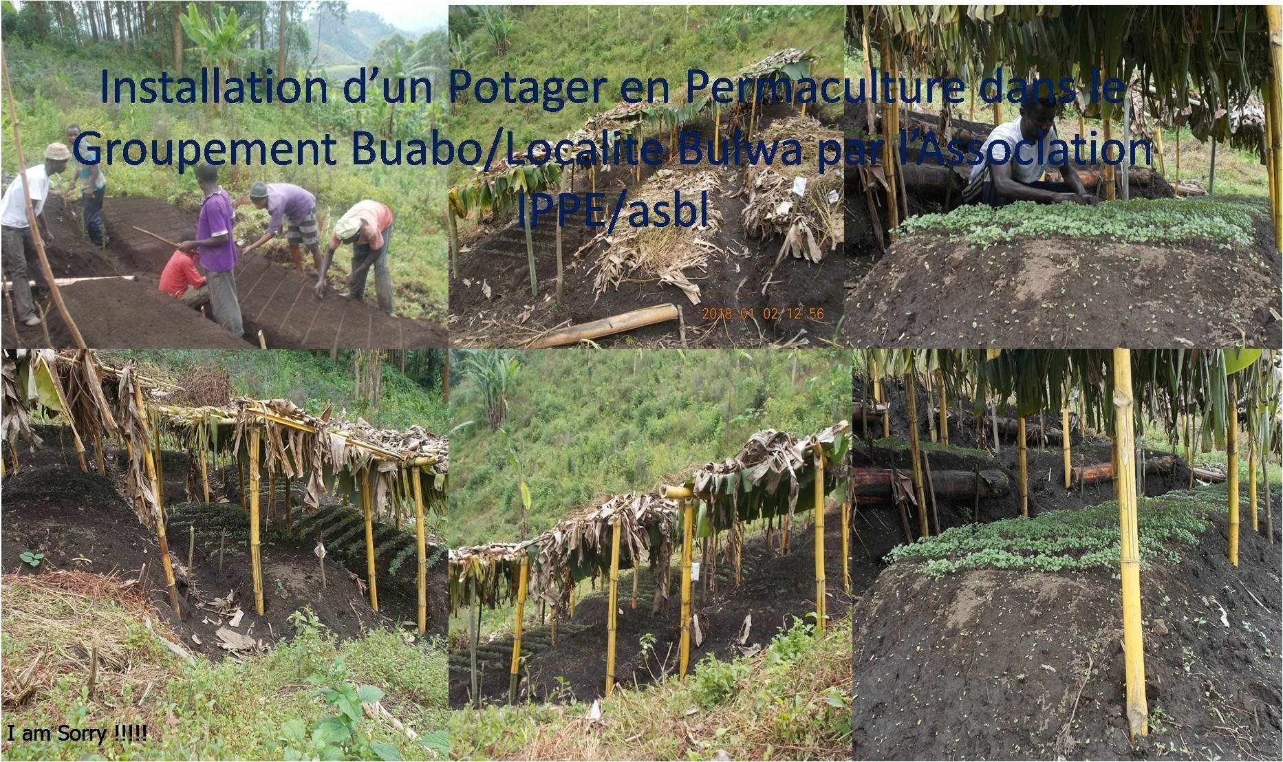 Installation D'un Potager En Permaculture Dans Le Groupement ... intérieur Organisation D Un Jardin Potager