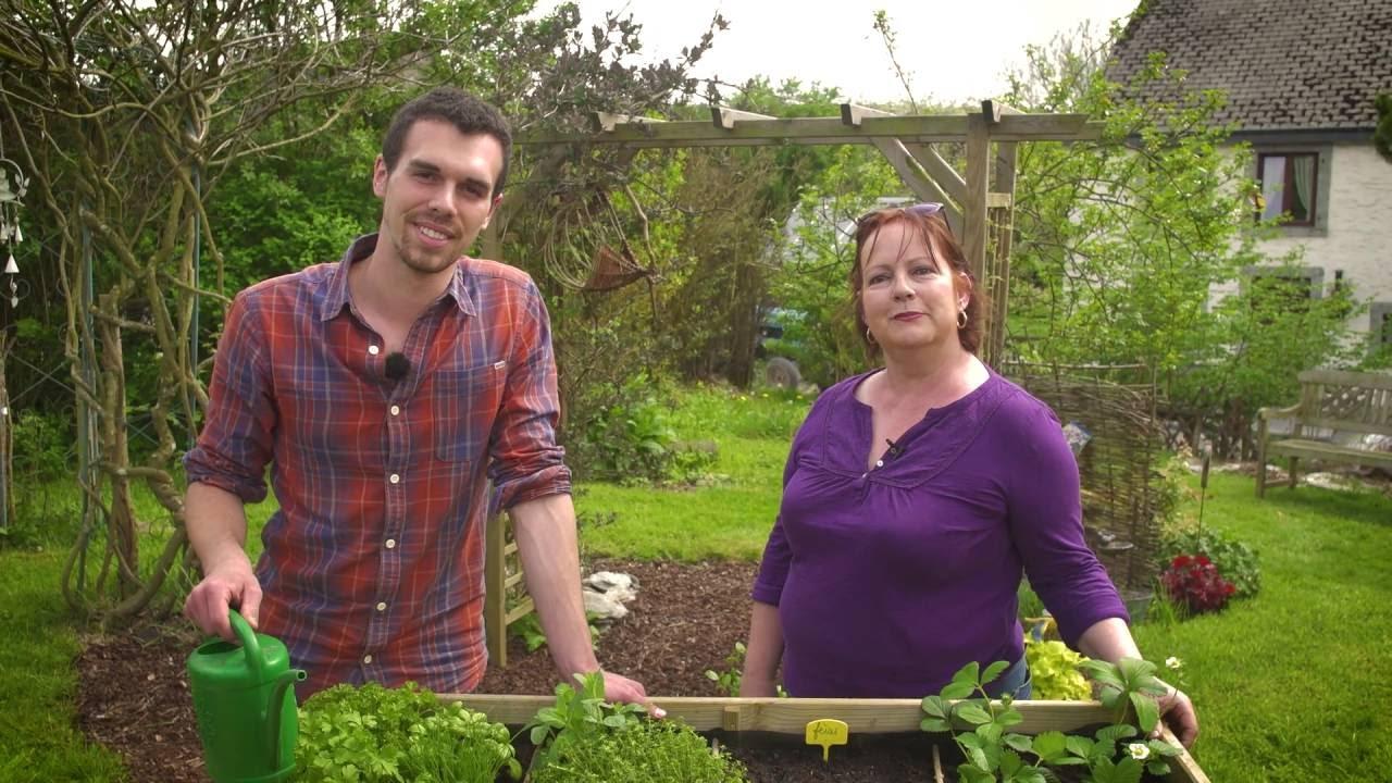 Installer/concevoir/construire Un Potager Surélevé (Trucs & Astuces) -  L'esprit Jardin 🌱 destiné Construire Jardin Surélevé