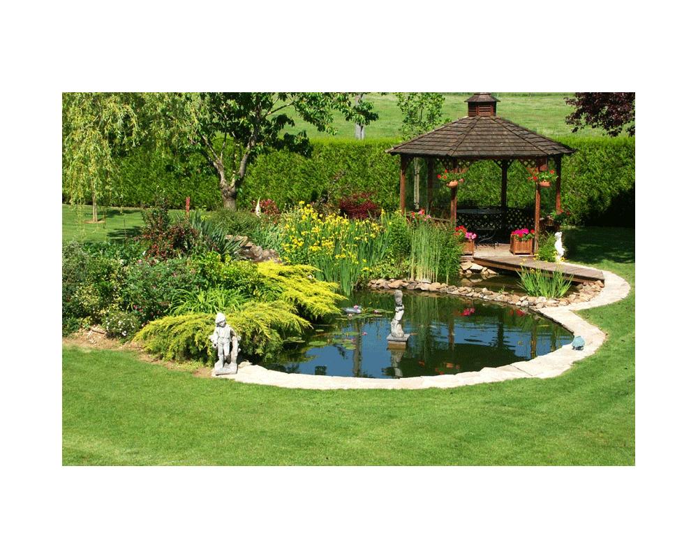 Installer Un Bassin Dans Son Jardin - Journal D'une Motarde intérieur Amenagement De Bassins De Jardin
