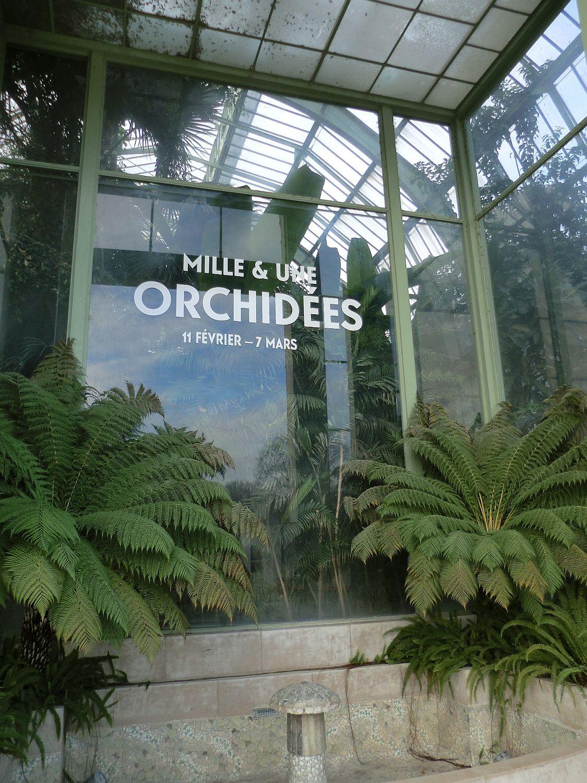 Invasion D'orchidées Dans Les Grandes Serres Du Jardin Des ... concernant Exposition Serre De Jardin