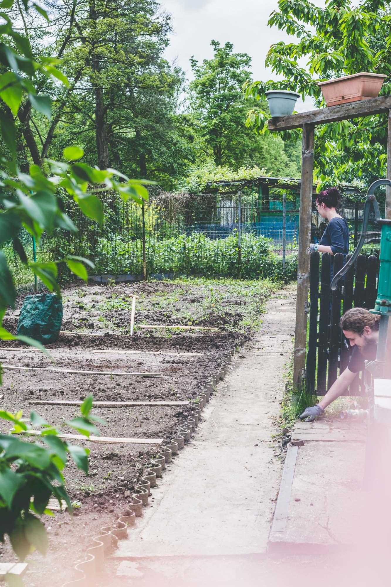 J'ai Testé Pour Toi : Avoir Un Jardin En Plein Centre Ville ... à Le Jardin Pour Les Nuls
