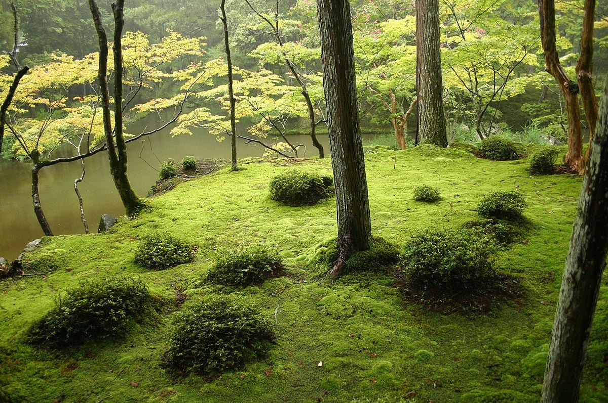 Japanese Garden - Wikipedia concernant Modele De Jardin Japonais