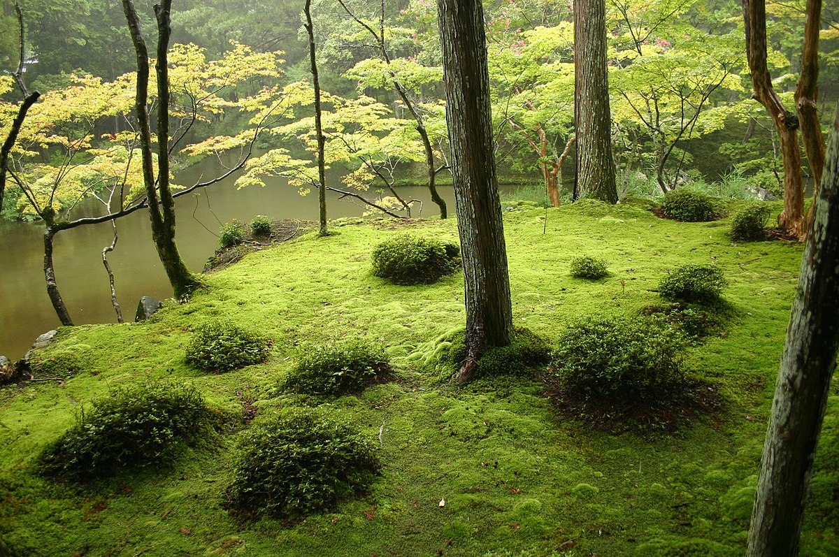Japanese Garden - Wikipedia dedans Location Maison Avec Jardin 34