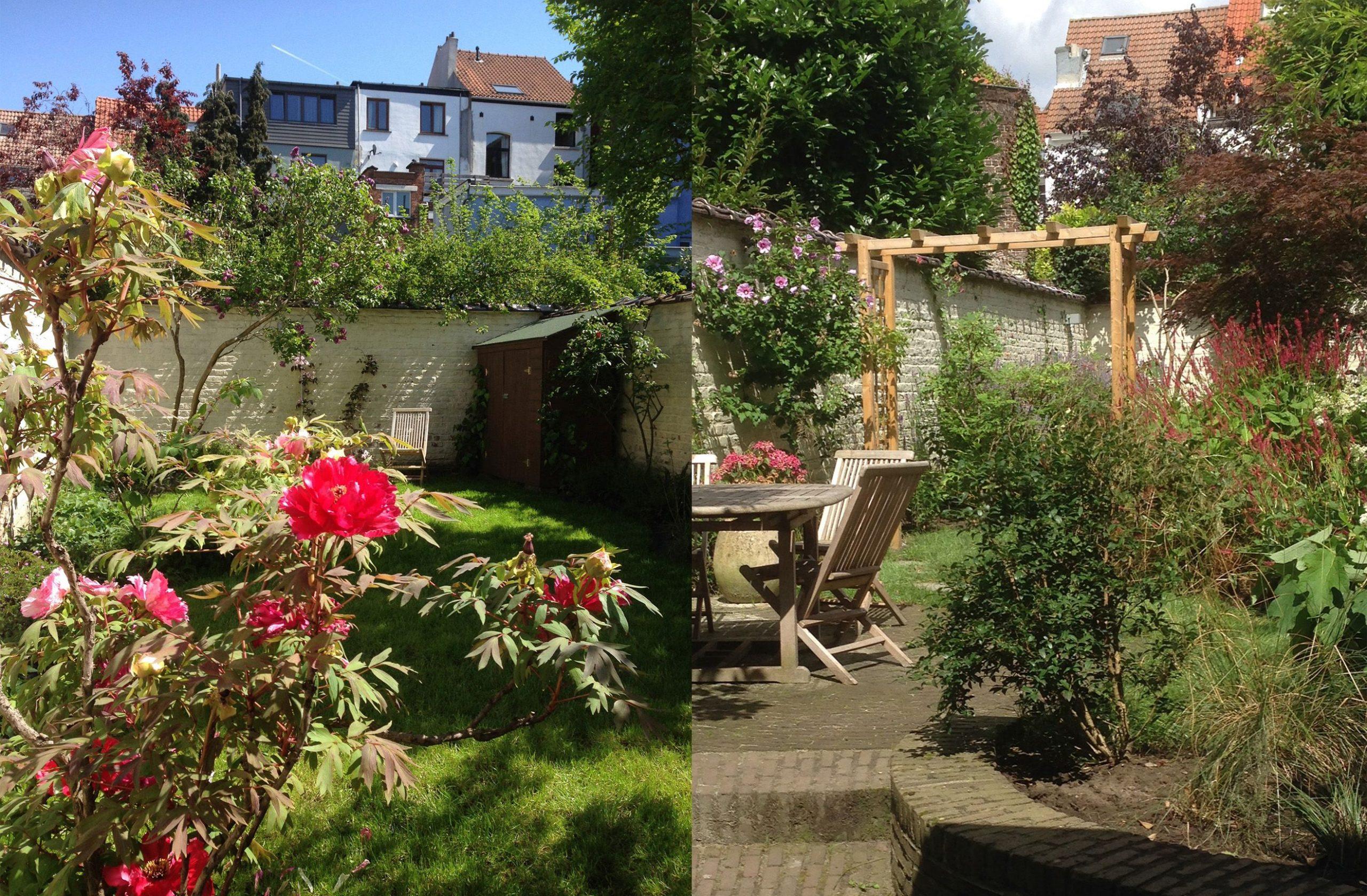 Jardin 100M2 - Bruxelles/ Marguerite Ferry - Urban Garden ... concernant Arceau Jardin