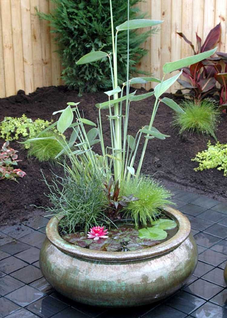 Jardin Aquatique En Pot -Une Petite Oasis À Mettre Au Balcon ... concernant Mini Jardin Balcon