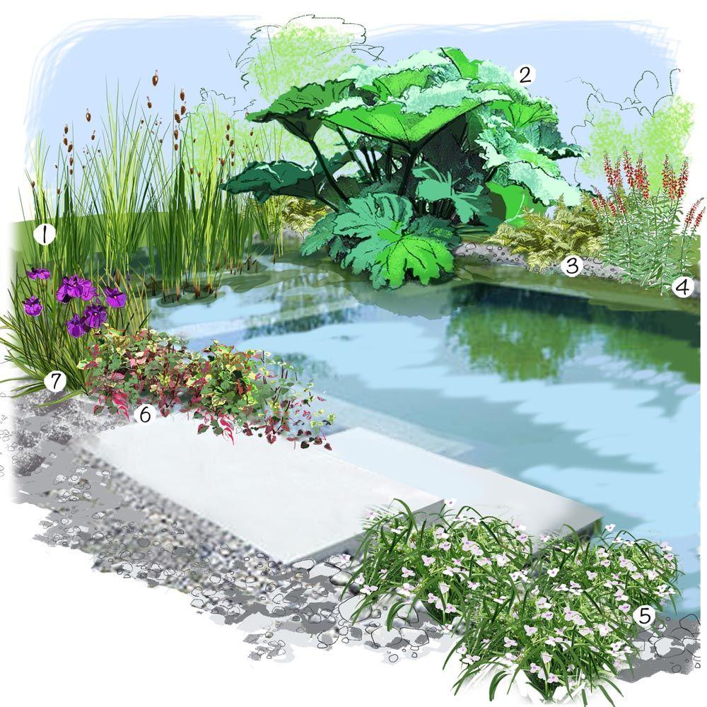 Jardin Au Bord De L'eau | Amenagement Jardin, Idée ... destiné Exemple D Aménagement De Jardin
