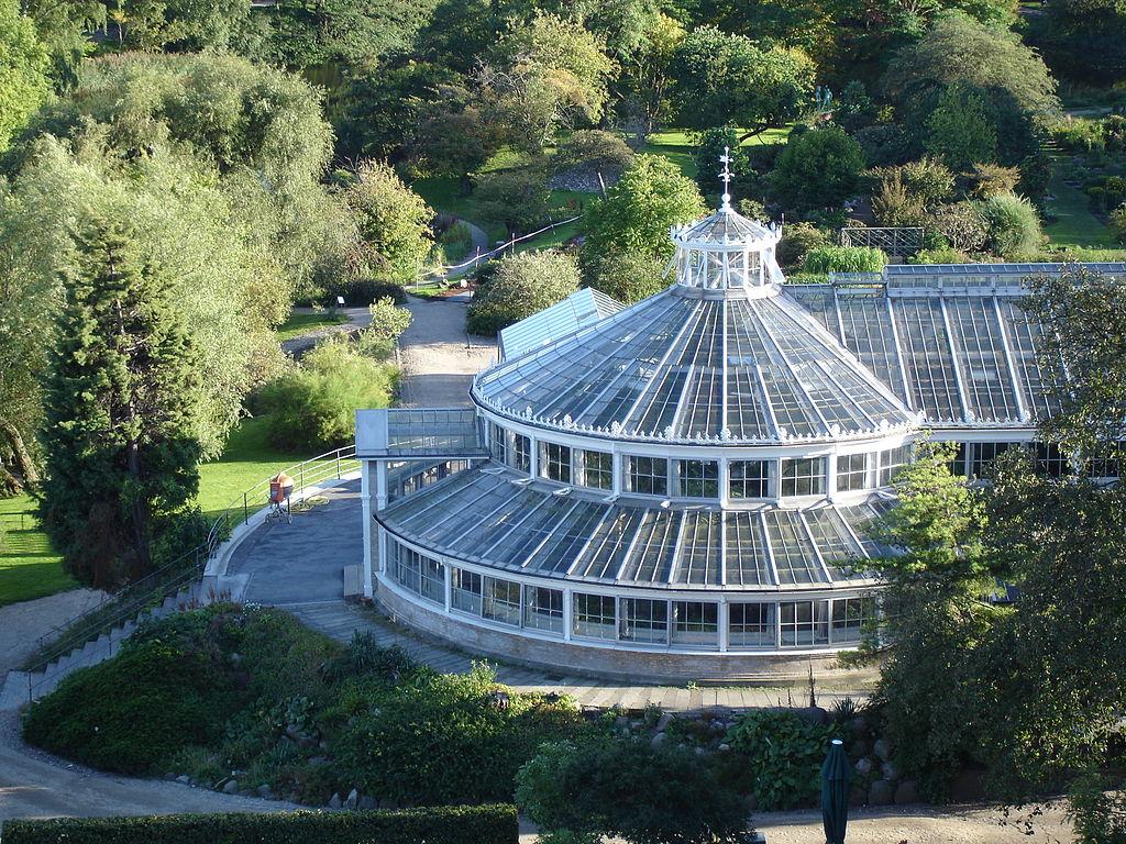 Jardin Botanique De Copenhague Et Ses Serres Monumentales ... concernant Exposition Serre De Jardin