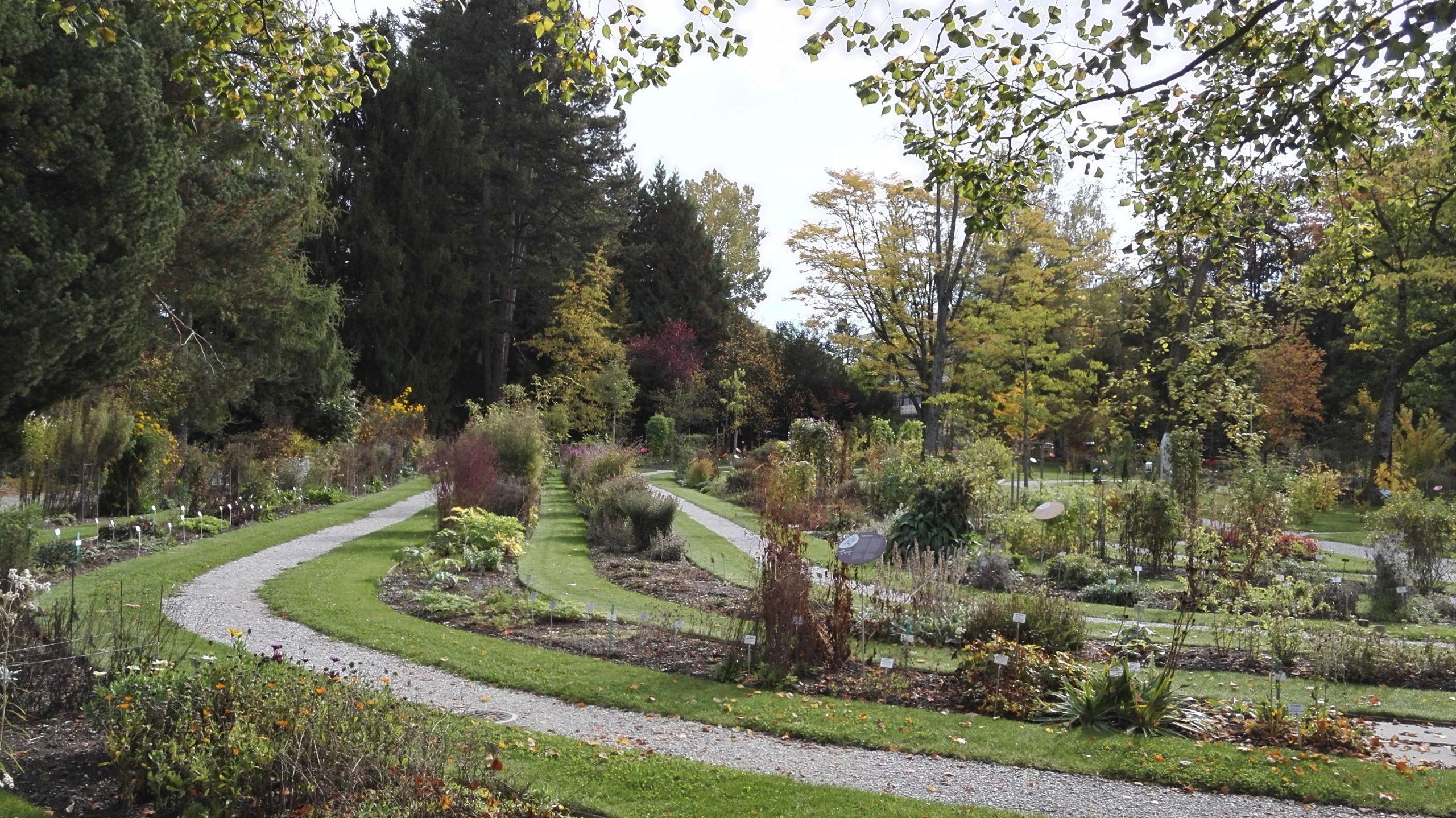 Jardin Botanique De L'université De Fribourg — Wikipédia intérieur Serre De Jardin Occasion