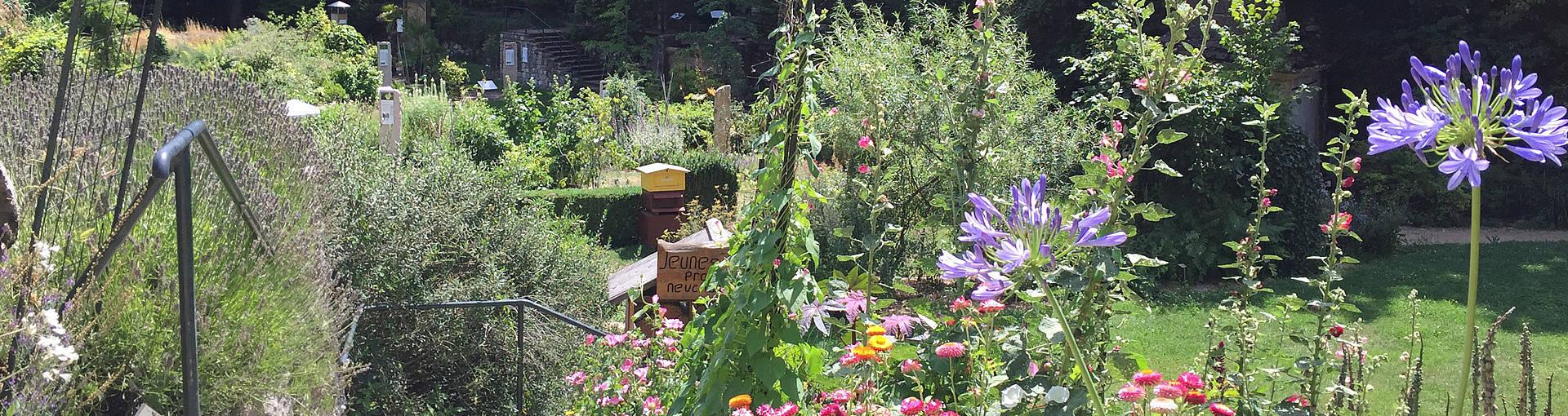 Jardin Botanique destiné Jardin Botanique Emploi