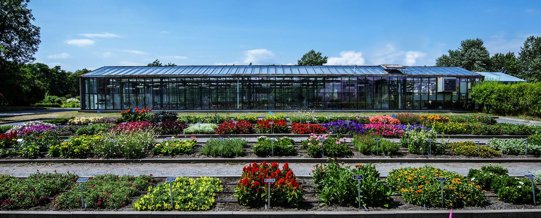 Jardin Botanique Roger-Van Den Hende De L'université Laval | pour Jardin Botanique Emploi