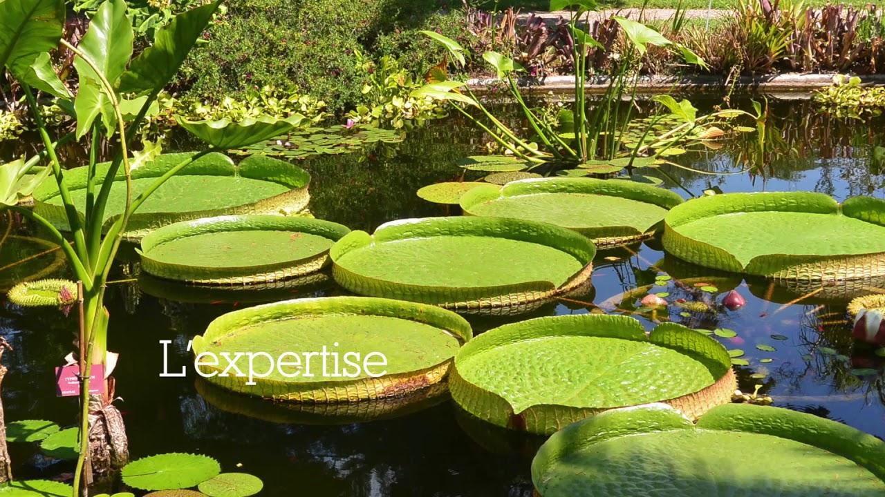 Jardin Botanique Val Rahmeh-Menton | Muséum National D ... pour Jardin Botanique Emploi