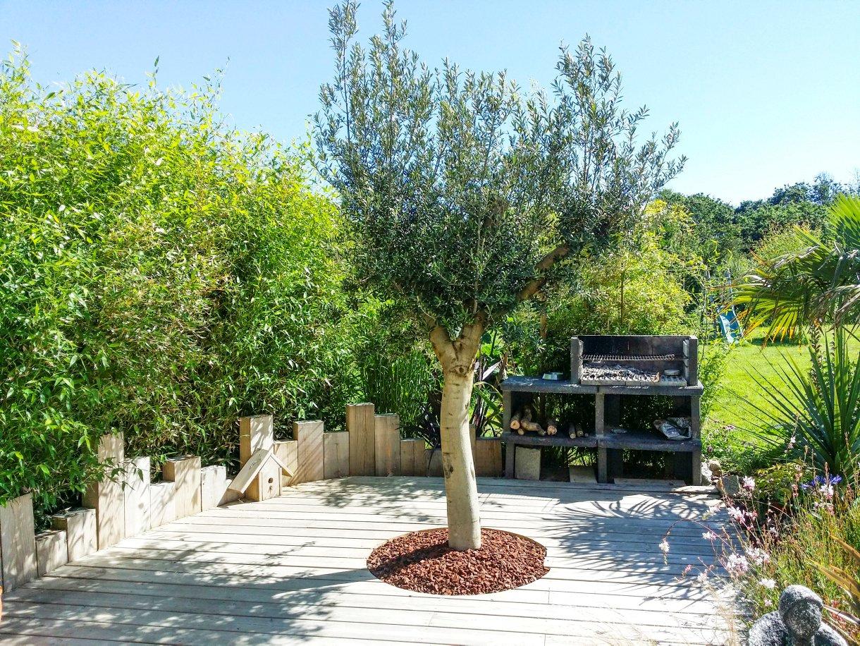 Jardin Breton Aux Allures De Jardin Exotique I Détente Jardin à Exemple De Jardin Méditerranéen