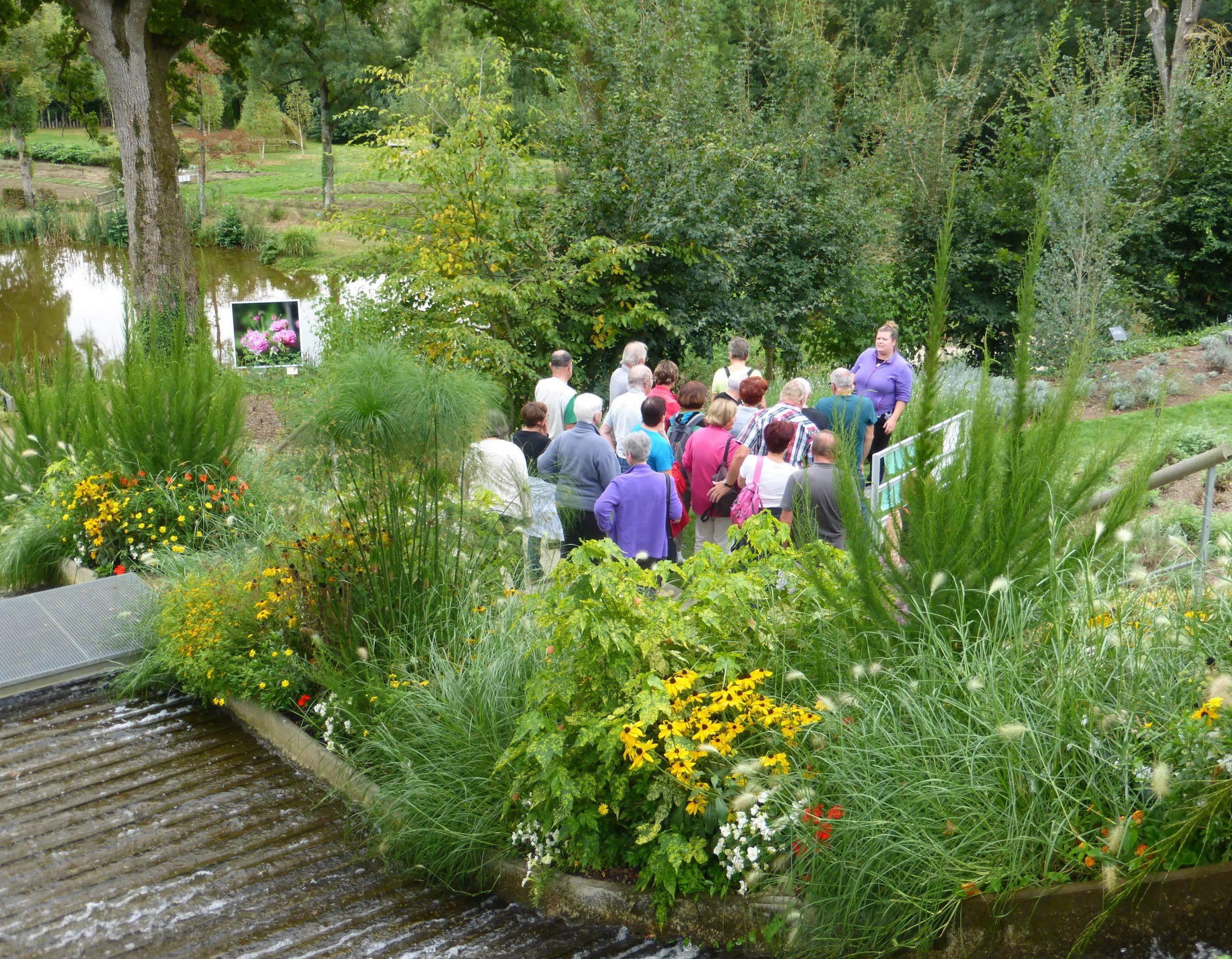 Jardin Camifolia À Chemillé (49) - Horaires Et Tarifs encequiconcerne Jardin Botanique Emploi