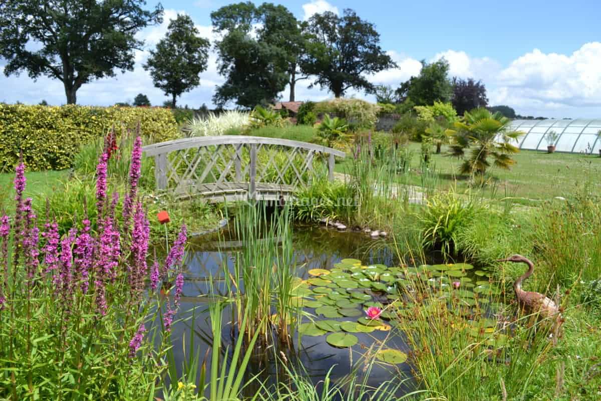 Jardin Clos, Petit Pont De Domaine De L'ecorce | Photo 14 tout Ecorces Jardin