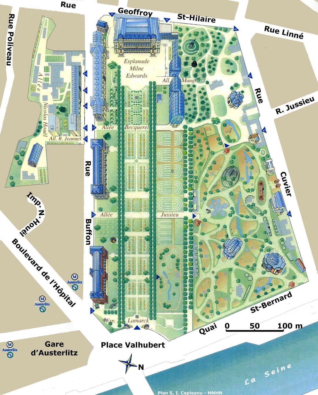 Jardin Des Plantes De Paris — Wikipédia destiné Modèle De Jardin Fleuri