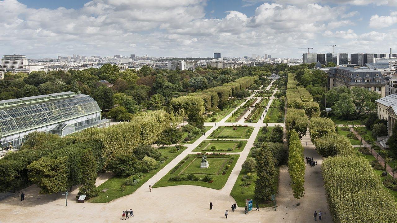 Jardin Des Plantes | Galeries, Jardins, Zoo - Jardin Des Plantes concernant Plantes Pour Jardin Japonais