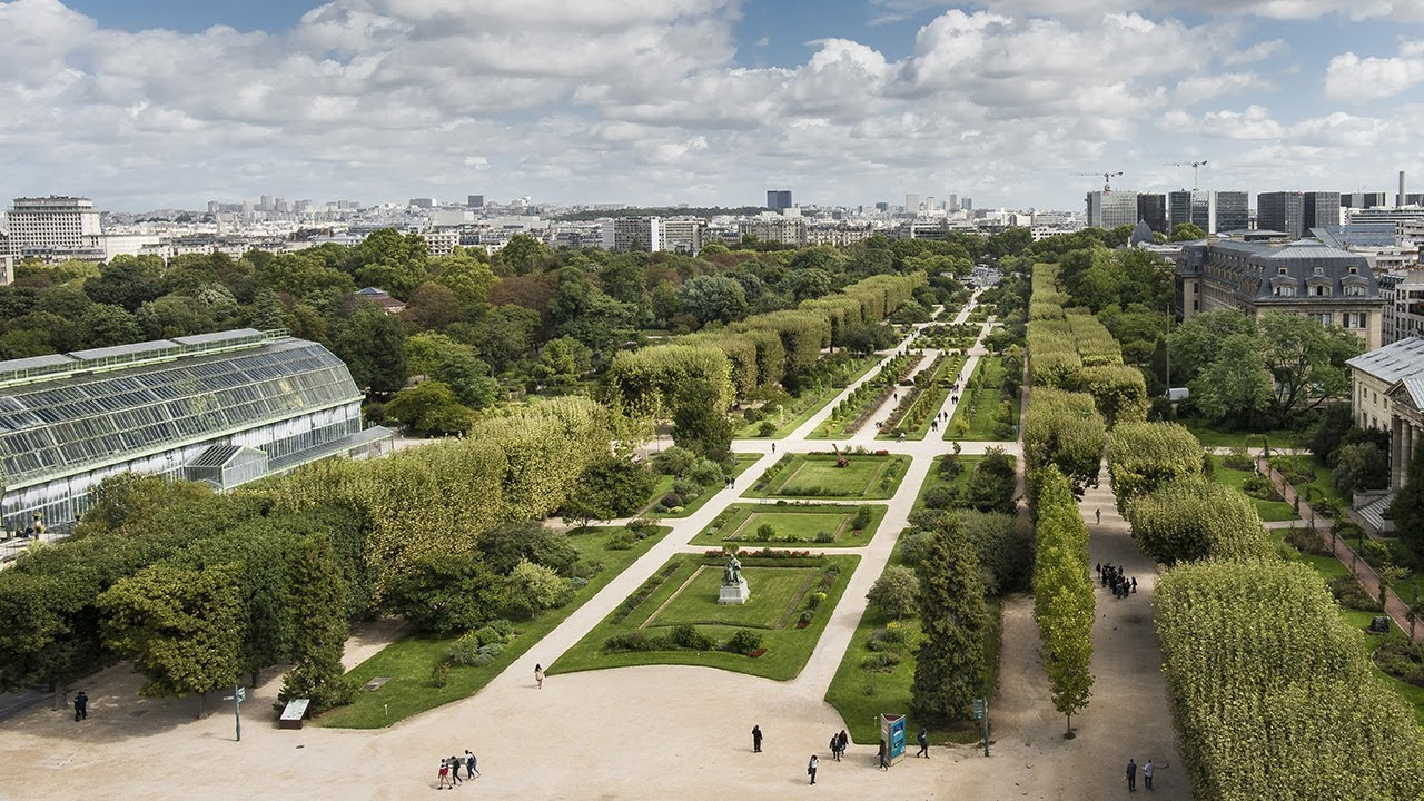 Jardin Des Plantes | Galeries, Jardins, Zoo - Jardin Des Plantes encequiconcerne Plante Pour Jardin Japonais