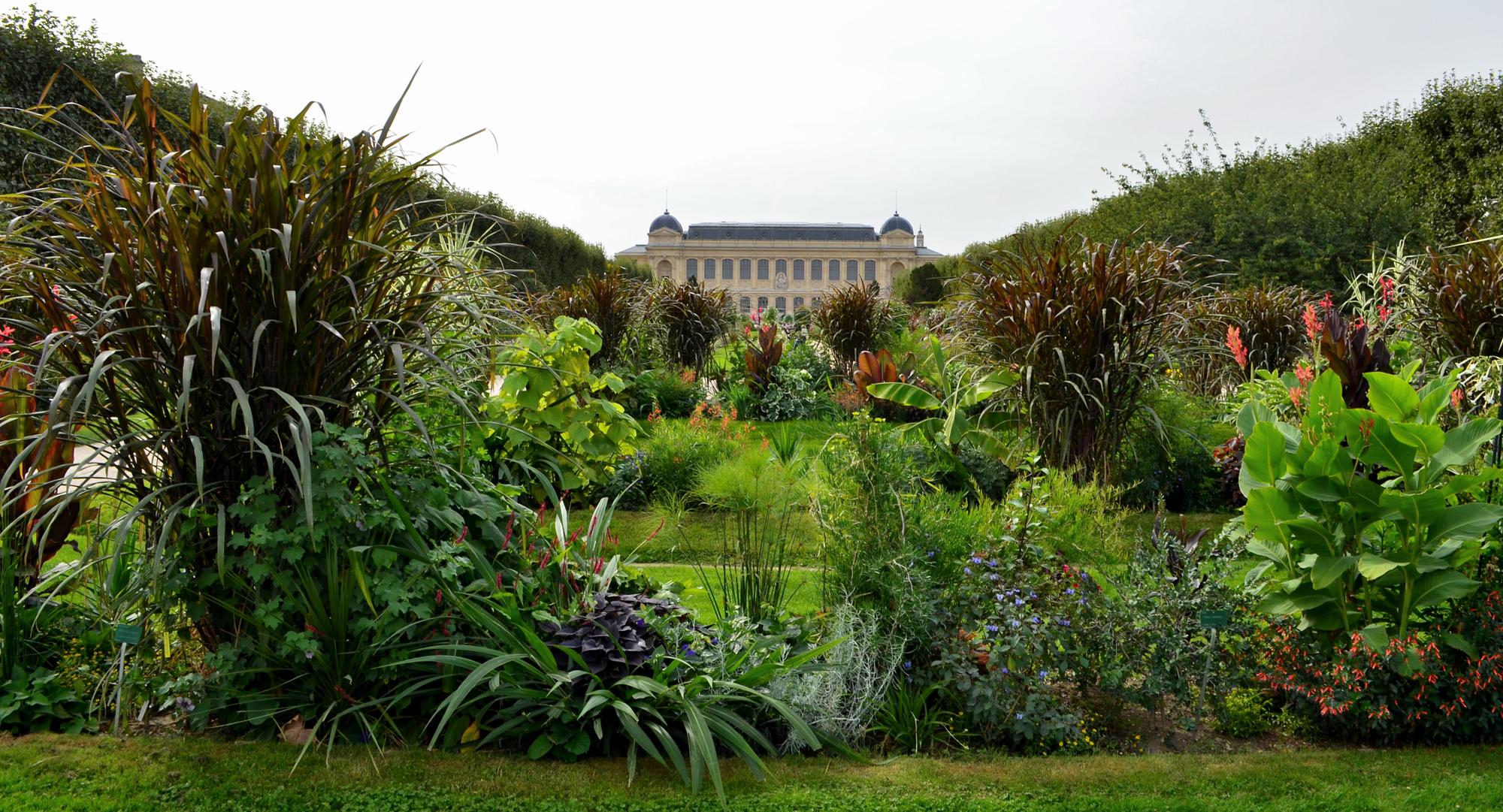Jardin Des Plantes | Galeries, Jardins, Zoo - Jardin Des Plantes pour Créer Un Plan De Jardin Gratuit