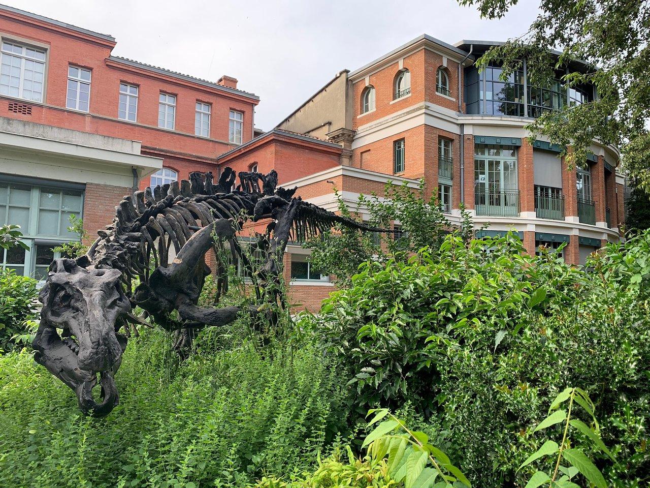 Jardin Des Plantes - Toulouse - Jardin Des Plantes Yorumları ... destiné Salin De Jardin