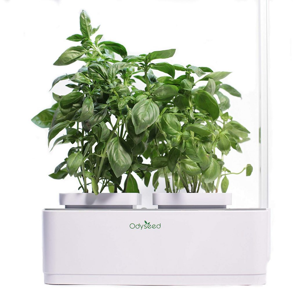 Jardin D'intérieur Odyseed : Avis Et Test D'un Potager Autonome serapportantà Jardin En Kit Pret A Planter