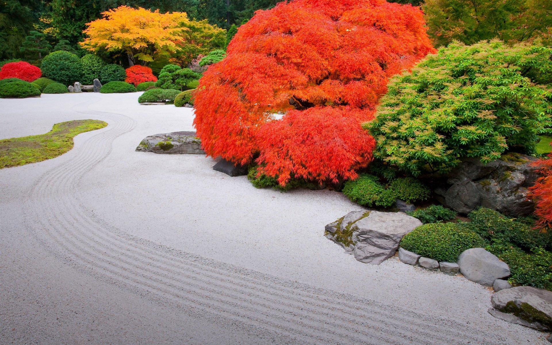 Jardin Japonais Fond D'écran Hd | Arrière-Plan | 1920X1200 ... intérieur Construction Jardin Japonais