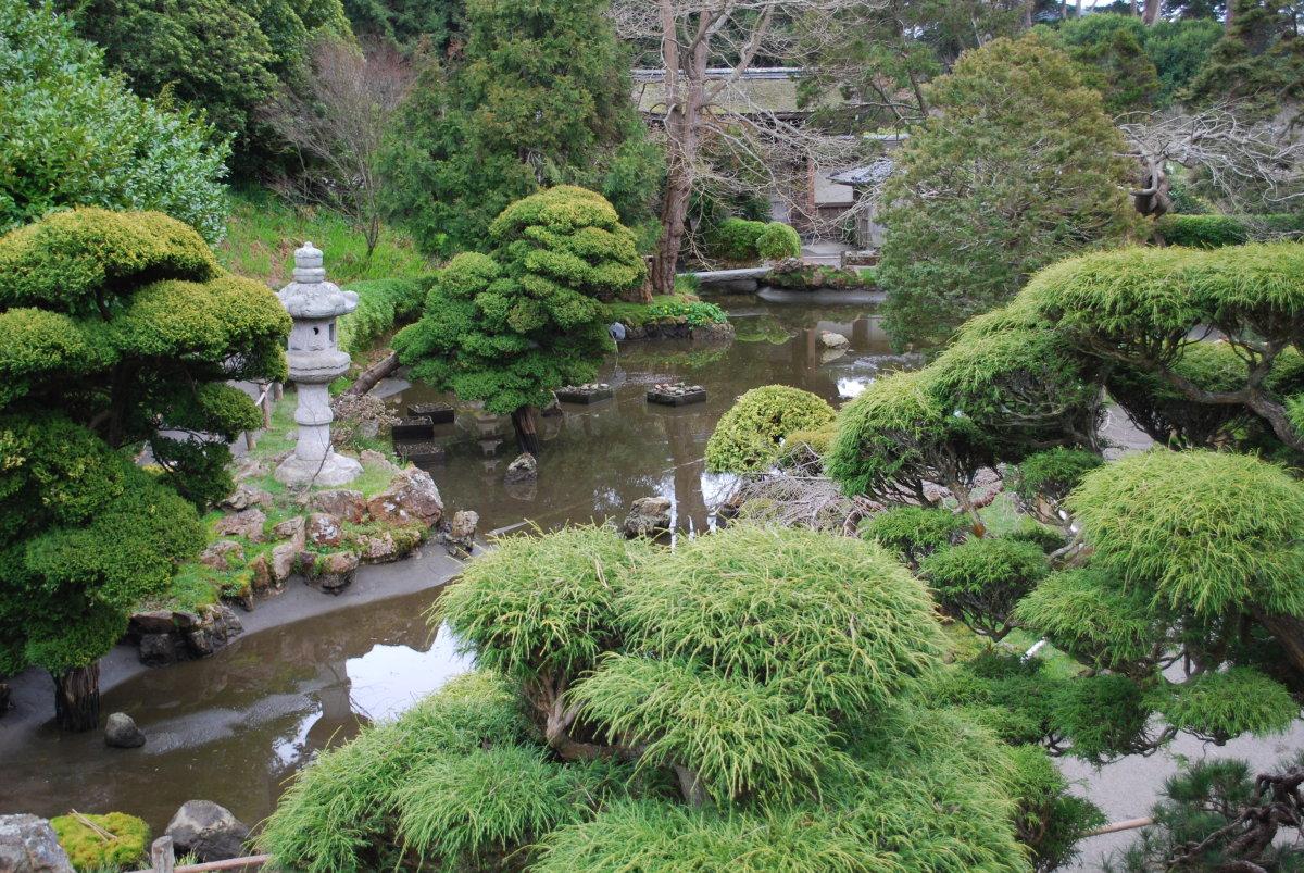 Jardin Japonais - Giverny News avec Plantes Pour Jardin Japonais