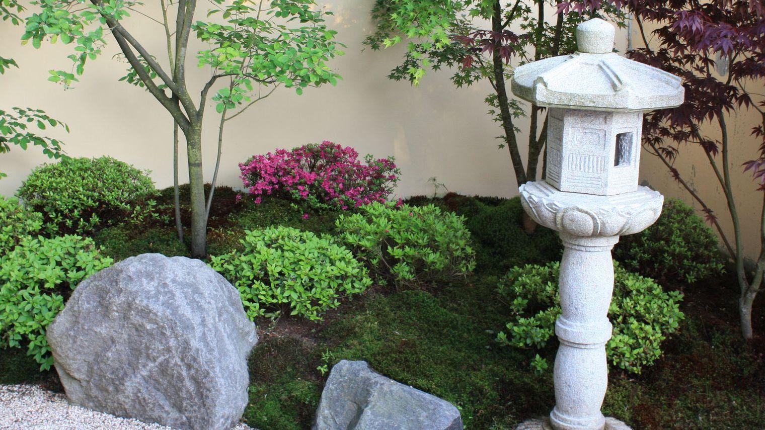 Jardin Japonais : Les Plantes Et Arbres Pour Un Jardin Zen ... tout Plante Pour Jardin Japonais