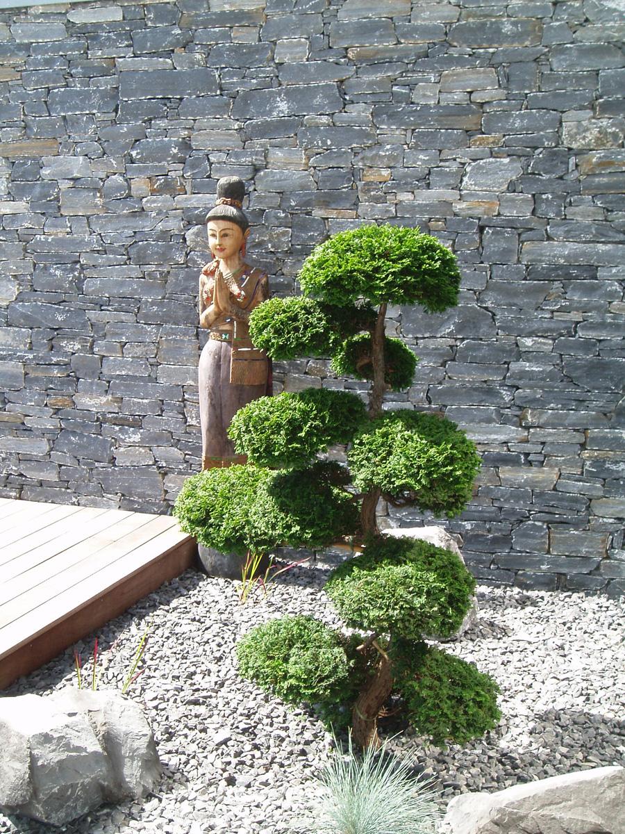 Jardin Japonais Plantes – Trouver Des Idées Pour Voyager En Asie encequiconcerne Plantes Pour Jardin Japonais