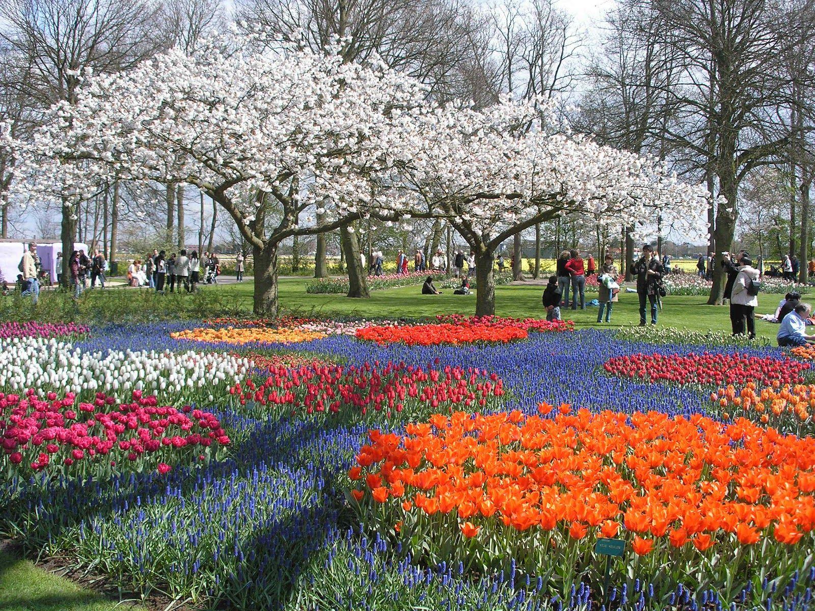 Jardín Keukenhof En Holanda Uno De Los Jardines Más Hermosos ... intérieur Jardin De Keukenhof