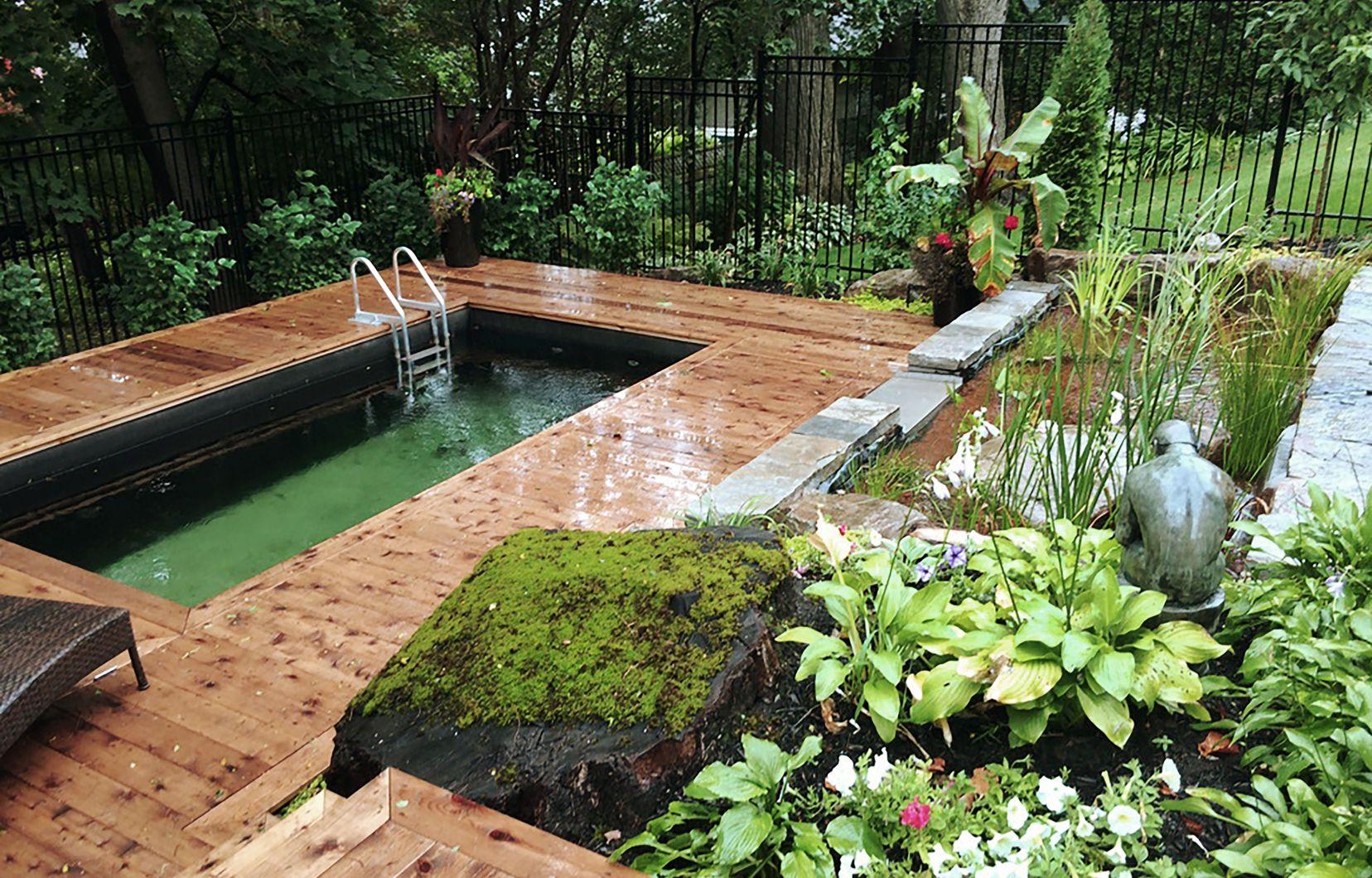 Jardin: La Piscine Naturelle Et L'étang De Baignade   Le Devoir encequiconcerne Prix D Un Bassin De Jardin