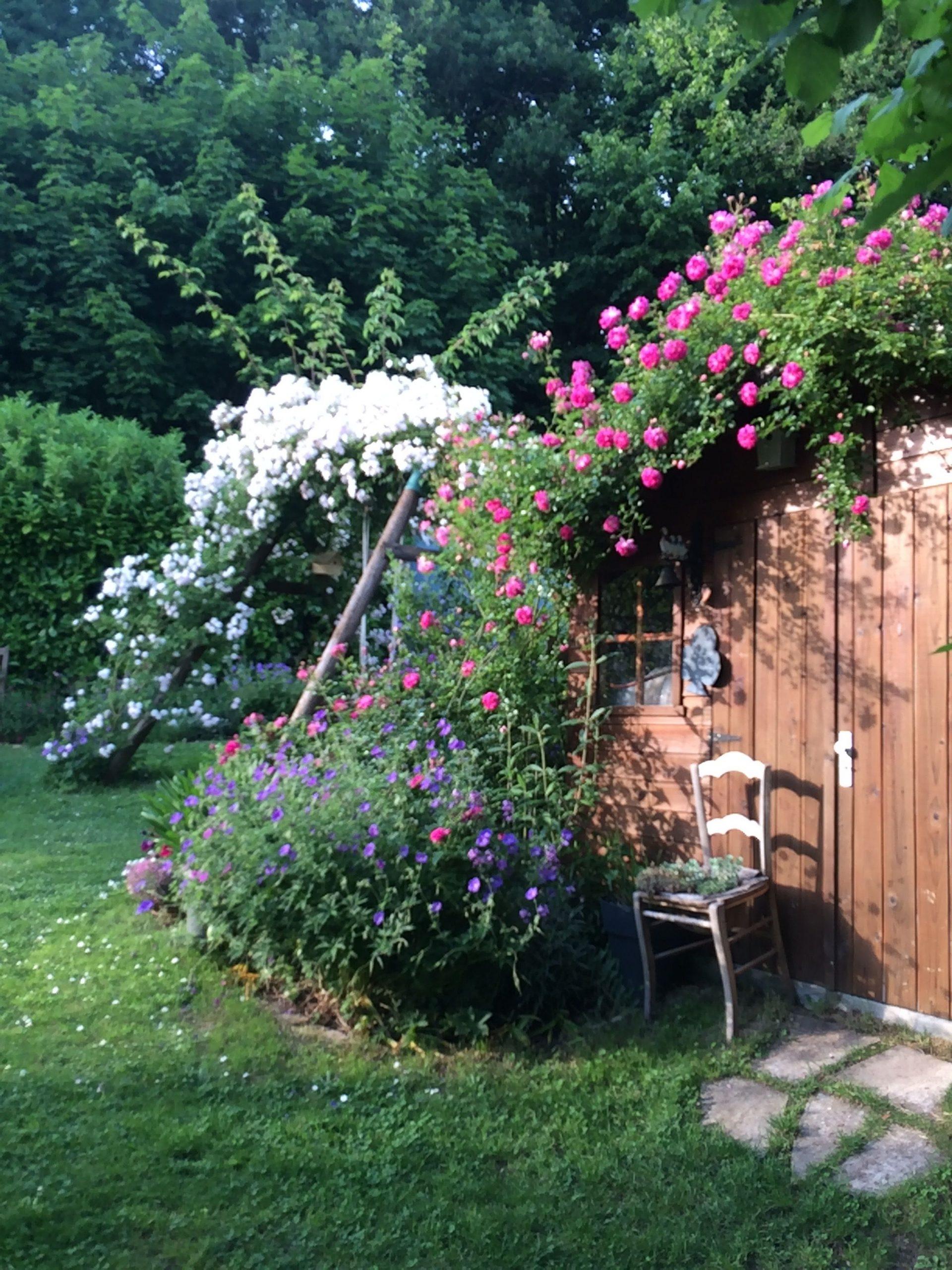 Jardin Le Petit Grillon   Jardins Et Grillon dedans Asperseur Jardin