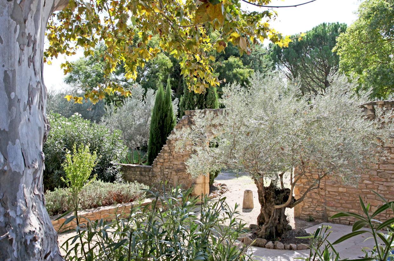 Jardin Méditerranéen concernant Exemple De Jardin Méditerranéen
