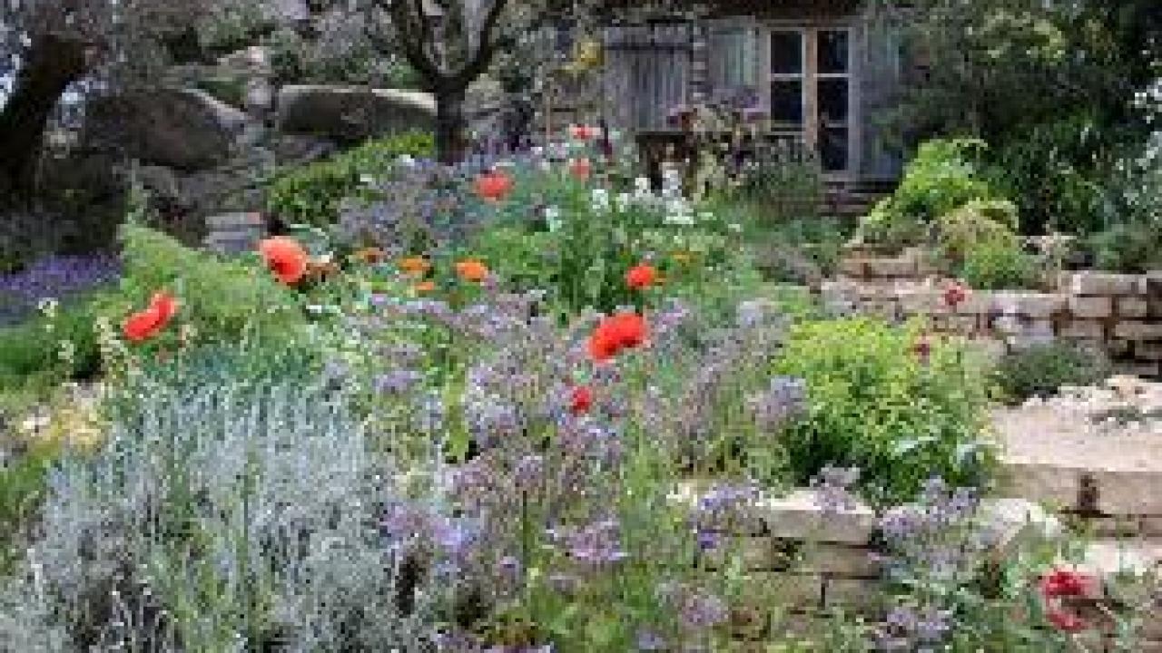 Jardin Méditerranéen : Des Idées De Plantation intérieur Exemple De Jardin Méditerranéen
