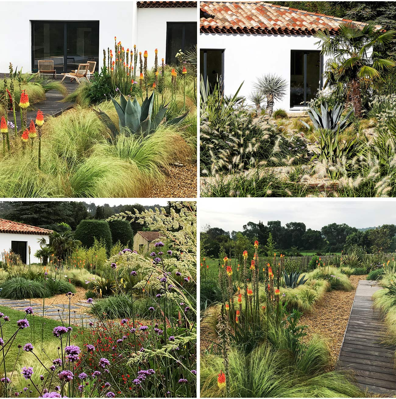 Jardin Méditerranéen - Paysagiste Montpellier & Aix-En-Provence destiné Exemple De Jardin Méditerranéen