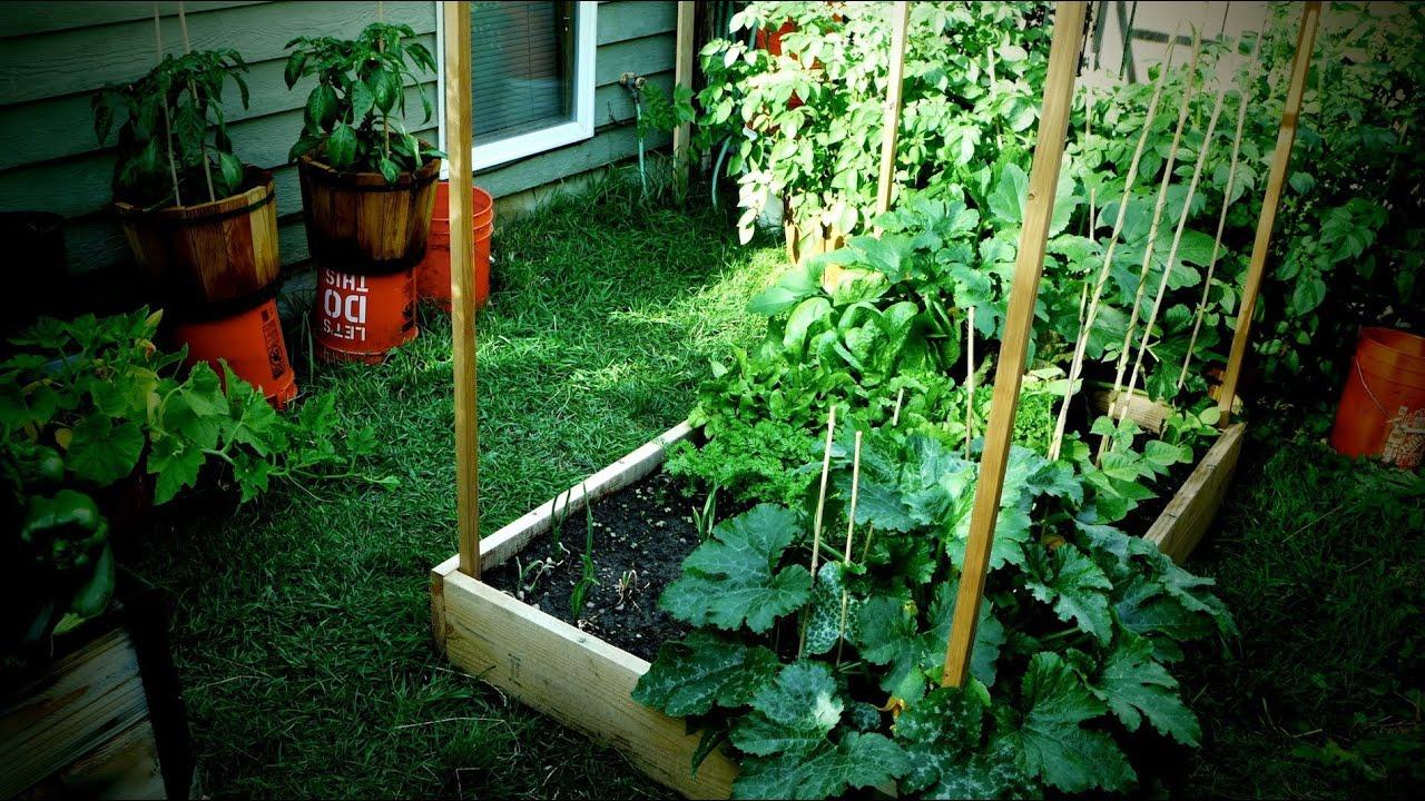 Jardin Potager Bio (Petite Surface) pour Faire Un Petit Potager Dans Son Jardin