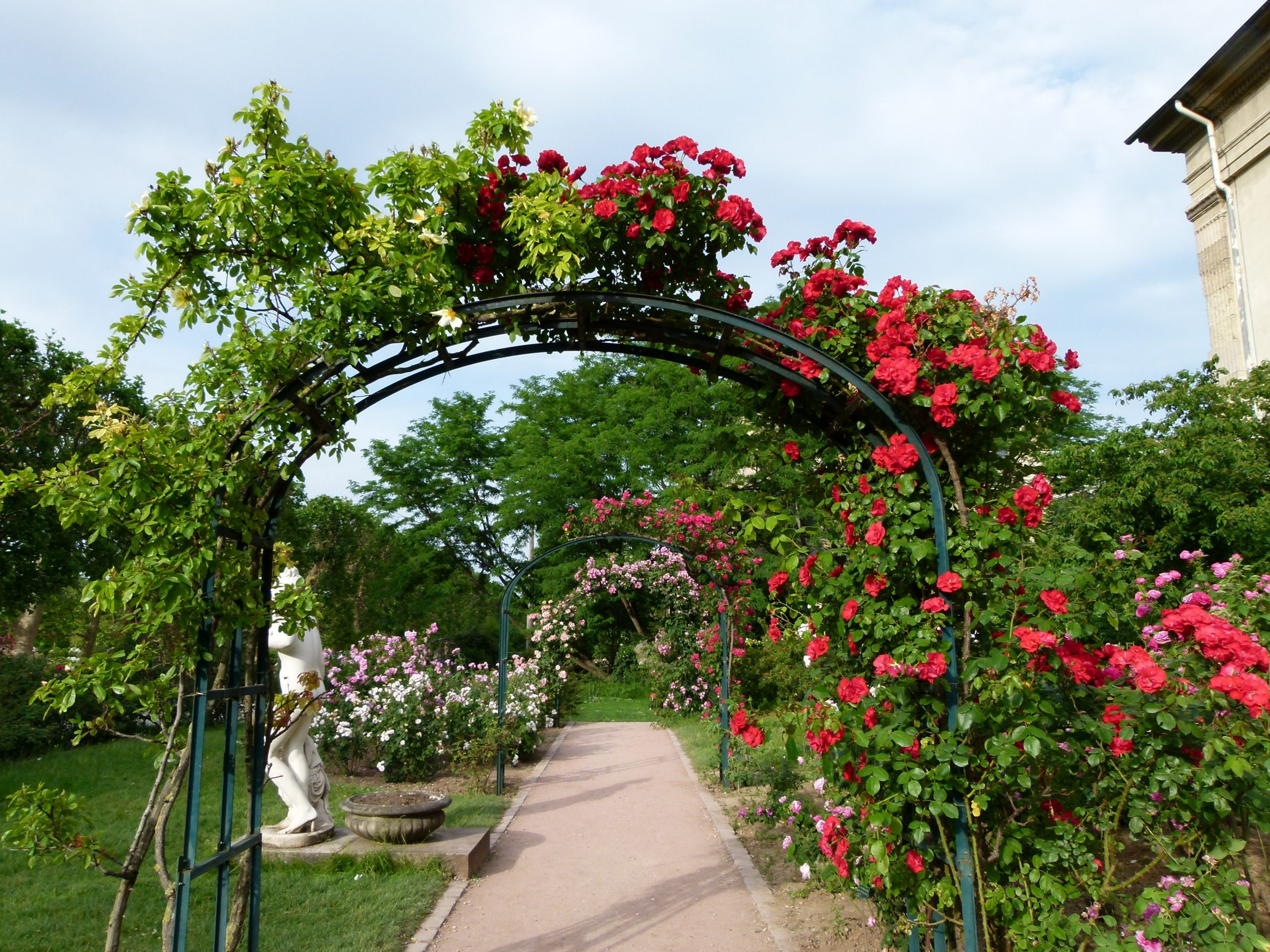 Jardin Rose Arch Gardening Geconsulting.cl serapportantà Arches De Jardin