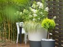 Jardin Urbain Contemporain : Ustensile Jardinage, Mini ... pour Mini Jardin Balcon