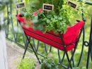 Jardin Urbain Contemporain : Ustensile Jardinage, Mini ... serapportantà Mini Jardin Balcon