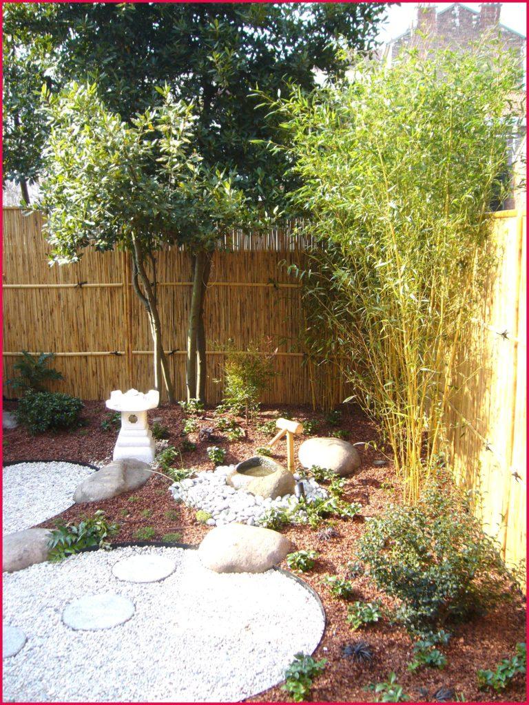Jardin Zen Exterieur Concept - Idees Conception Jardin concernant Plante Pour Jardin Japonais