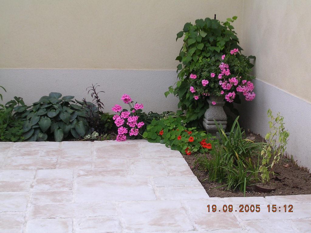Jardinage Et Création De Jardin Japonais À Luneray 76810 ... pour Jardin Japonais Sur Terrasse