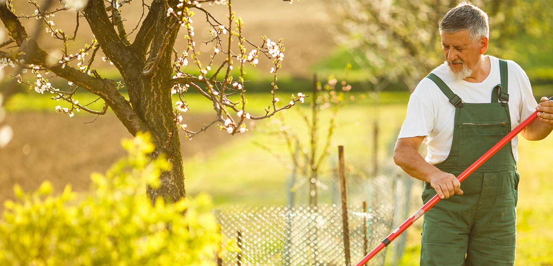 Jardinage Pour Les Nuls: Aménagement De Jardin avec Jardiner Pour Les Nuls