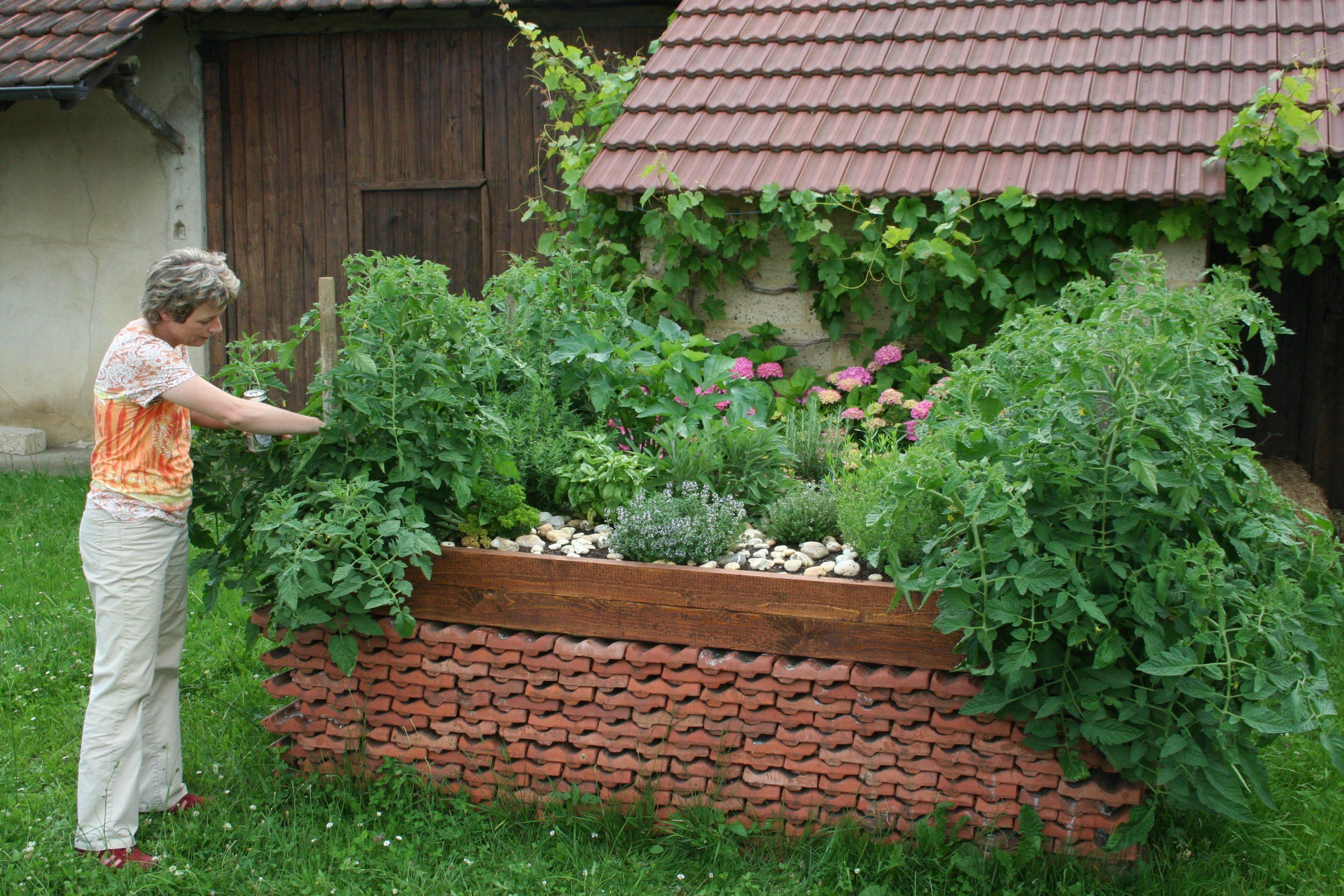 Jardinage Surélevé — Wikipédia intérieur Jardin En Carré Surélevé